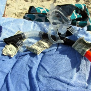 snorkeling profit